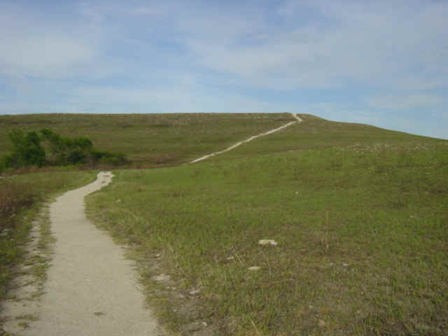 Hiking trail at the Konza